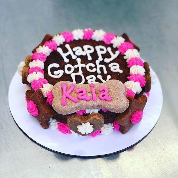 happy gotcha day kaia