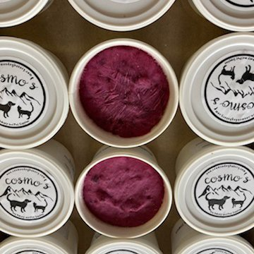 Blueberry Bacon Frozen Yogurt group dog treats