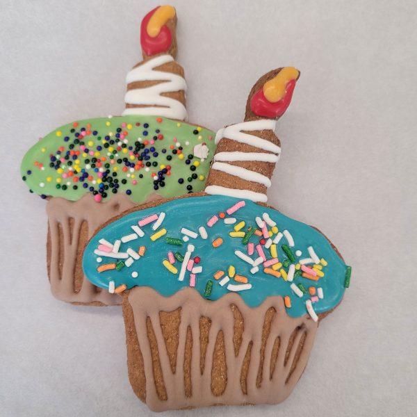 Seasonal Decorated cupcakes duo green blue